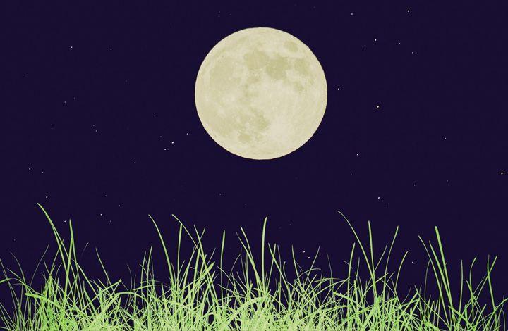 Эксперт: если эксперимент удастся, на Луне можно будет иметь свой огород